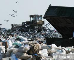 Свалка. Челябинск., мусор, трактор, свалка