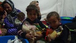 Волонтер Евгений Ганеев в Сирии, Сирия, ганеев евгений