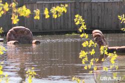 Паводок Затопленные дома Курган, паводок2016, наводнение, кресла в воде