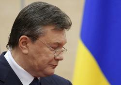 Открытая лицензия на 04.08.2015. Виктор Янукович., янукович виктор