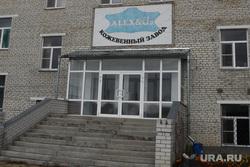 Игорь Ткачев в Каргапольском районе Курганская обл Каргаполье, кожевенный завод