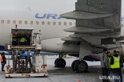 Клипарт, разное. Екатеринбург, уральские авиалинии, багаж, грузоперевозки, багажное отделение