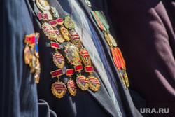 День ВДВ. Нижневартовск., ордена, медали, десантники