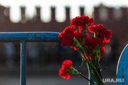 Марш Немцова. Москва, гвоздики, немцов мост, кремлевская стена