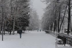 Снегопад в конце марта. Челябинск, аллея, снегопад