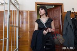 Ройзман выступает в суде в защиту блогера Сокооловского