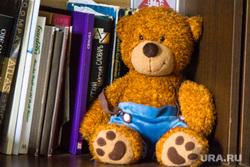 Дождь и солнце. Санкт-Петербург., книги, игрушка, медведь