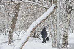 Мартовский снег в Екатеринбурге, снег, зима, парк, снег в городе, прогулка по парку