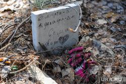 Стихийное кладбище домашних животных в парке им. Гагарина. Челябинск, кладбище домашних животных, кот сема