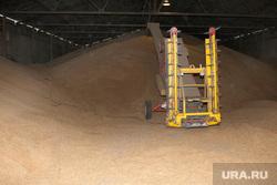 Алексей Кокорин в полях Курганская область, пшеница, урожай, зерно, склад