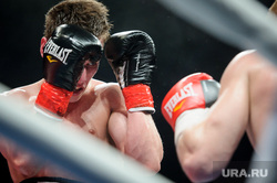Турнир по профессиональному боксу Ратиборец в Нижнем Тагиле, кузнецов никита