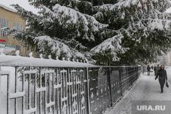 Снег в городе. Курган., зима, снег в городе
