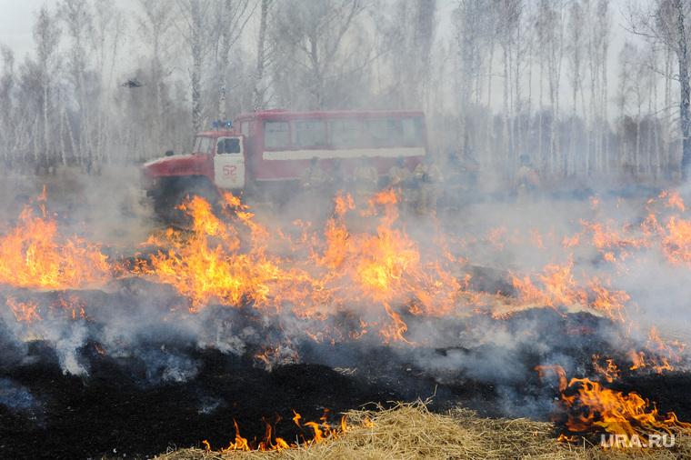 Весеннюю охоту предлагают отменить вЧелябинской области из-за риска пожаров