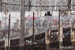 Бунт в исправительной колонии 46. Кировград, колючая проволока, зона, ик 46, колония, тюрьма