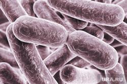 Клипарт депозитфото, бактерии, вирус, инфекция, микробы