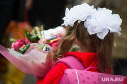День знаний. 1 сентября 2014г, цветы, учеба, бант, школа, образование, 1сентября
