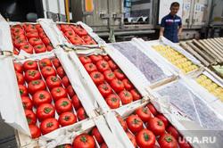 Мигранты, задержанные на 4 овощебазе. Екатеринбург, овощи, помидоры, овощебаза4, продуктовый рынок