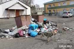 Мусор и свалки в городе. Курган, мусор, улица омская30