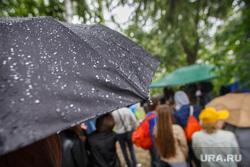 Дождь, Курара и коммунальные платежи, дождь, капли, зонтики