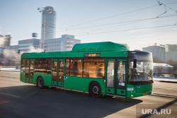 Общественный транспорт Екатеринбурга, автобус
