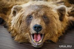 ВИП-охотники Екатеринбурга, медведь, чучело