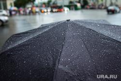 Дикая орхидея закрылась. Екатеринбург, зонт, непогода, дождь