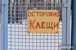 Клещи. Челябинск., осторожно клещи