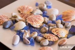 Греция. Крит., пляж, ракушки, камушки, галька