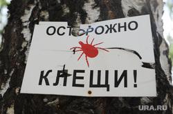 Открытие памятника Белоусову Челябинск, осторожно клещи