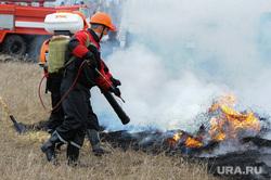 Совместные учения МЧС Челябинской и Курганской областей по тушению лесных пожаров. Челябинск, пожар, тушение огня, сельскохозяйственный пал
