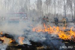 Совместные учения МЧС Челябинской и Курганской областей по тушению лесных пожаров. Челябинск, пожар, пламя, огонь, сельскохозяйственный пал
