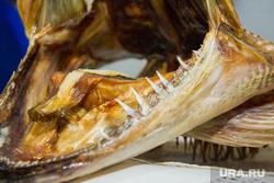 Продукты и товары. Ханты-Мансийск., зубы, хищная рыба, пасть