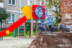 1000 дворов 2014 год. Екатеринбург, двор, голуби, мусорные контейнеры, детская площадка, горка, мусорный бак, мусорка, помойка