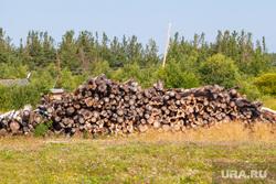 Путевые фото. Нижний Тагил -Восточный - Верхотурье - Гари, дрова, деревья, поленница, лесопилка, лесоповал, древесина, пилорама