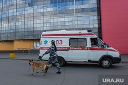Резня на проспекте Ленина. Сургут, эвакуация, кинолог, скорая помощь, сити молл