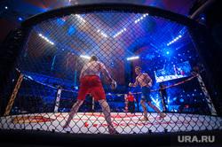 Турнир по смешанным единоборствам Fight Nights Global. Екатеринбург, бой, клетка, смешанные единоборства, поединок, бои без правил, fight nights, файт найт