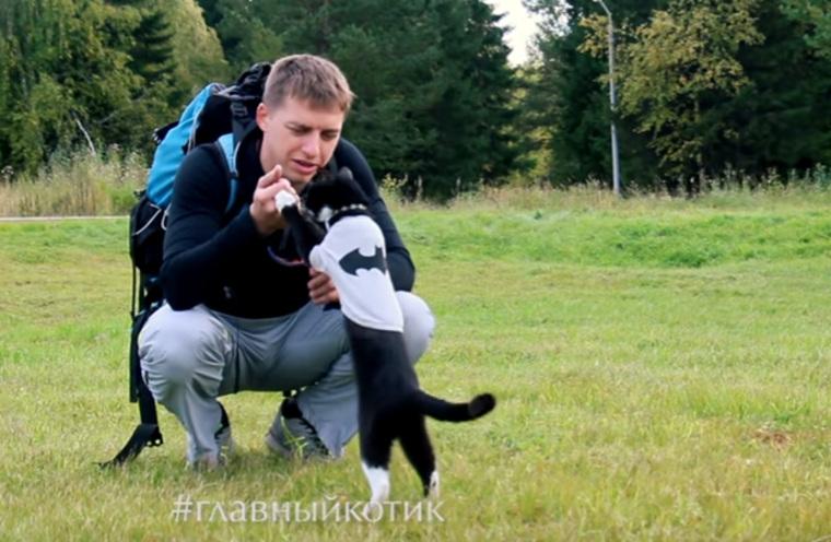 Уральский кот-скалолаз с«шизонутым хозяином» попал вшоу Шнура