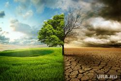 Космос, планеты, лесные пожары, ураган, природные катаклизмы, природа, природные катаклизмы, глобальное потепление