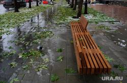 Благоустройство улиц Екатеринбурга после первого снега, скамейка, велодорожка, листва, осень, проспект ленина