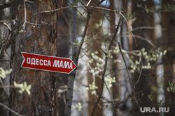 Родительский день. Северное и Широкореченское кладбища. Екатеринбург, стрелка, направление, могилы, одесса мама