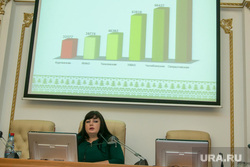 Заседание комиссии по демографии в области. Курган, афанасьева светлана