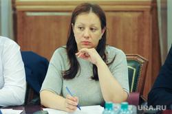 Совещание по Гринфлайт в обладминистрации Челябинск, смирных ольга