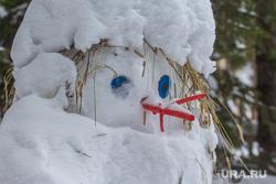 Шапшинское урочище. Ханты-Мансийский район, снеговик, тоска