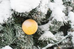 Ямал-Ири, елка, новый год