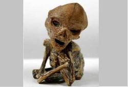 Инопланетянин Алешенька Кыштымский карлик гуманоид