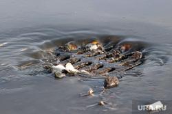 Прорыв воды у спорткомплекса Курган, ливневая канализация