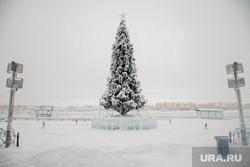 Виды Салехарда, снег, зима, новогодняя елка, город салехард, иней, мороз