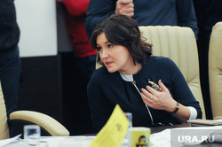Заседание  рабочей группы Общественной палаты по  вопросу строительства Томинского ГОК. Челябинск, павлова маргарита