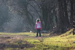 Открытая лицензия от 04.08.2016 , ребенок, лес, девочка, дети со спины