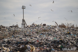 Проверка ОНФ и Общественной палатой Тюменской области полигона твердых бытовых отходов на Велижанском тракте. Тюмень, мусор, отходы, полигон тбо, свалка, экология